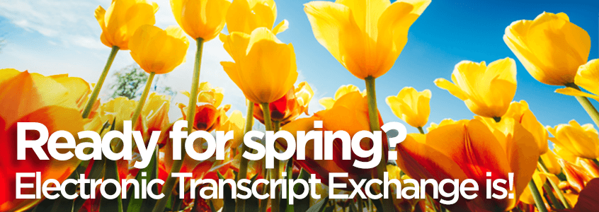 Beautify Your Transcripts with ETX's New Features